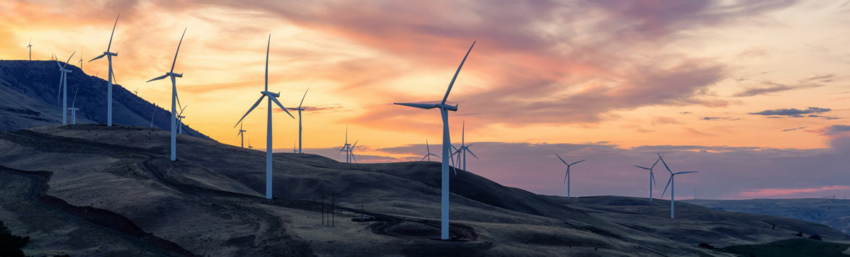 Miljöpolicy för NetNordic
